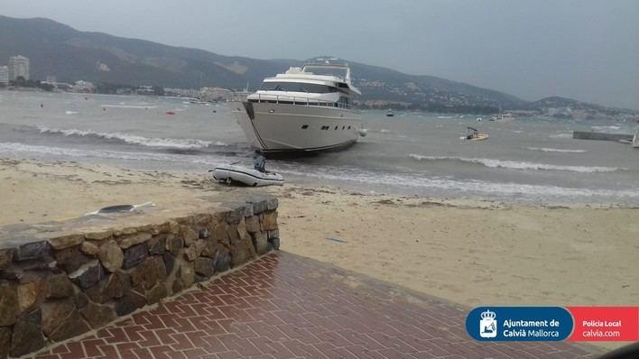 El viento tira pinos y hace encallar varias embarcaciones en Calvià
