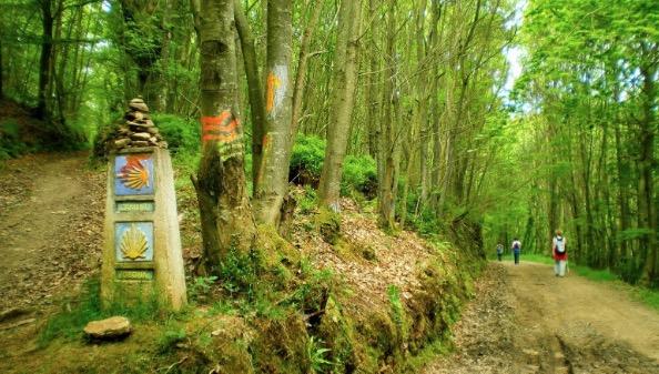 El Camino de Santiago una ruta con más de mil años de historia