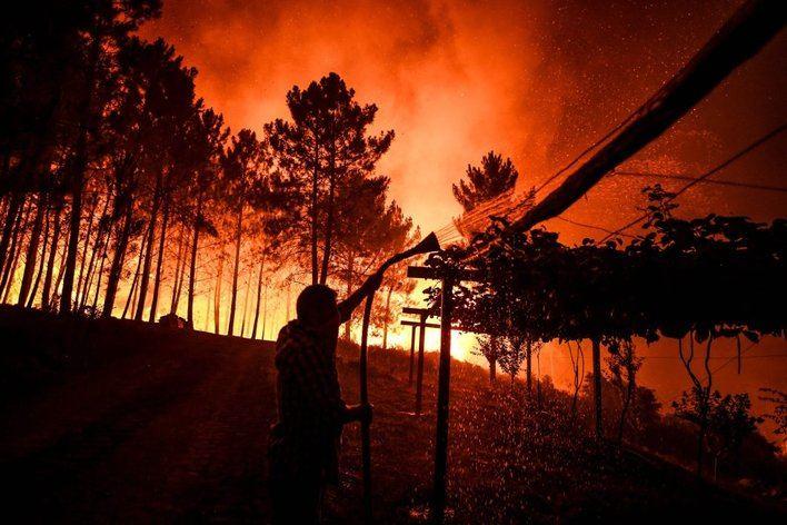 Más de 800 bomberos trabajan en un gran incendio descontrolado en Portugal