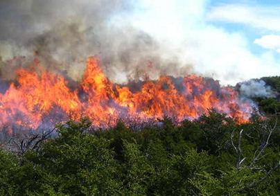 La temporada de alto riesgo de incendio forestal se inicia este martes en Balears