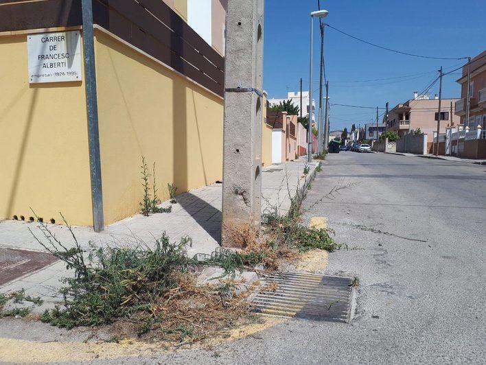 Cort pone en marcha un plan de choque para erradicar las malas hierbas de las aceras