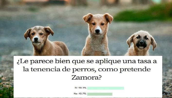 A seis de cada diez lectores les parece bien cobrar una tasa por tener perros