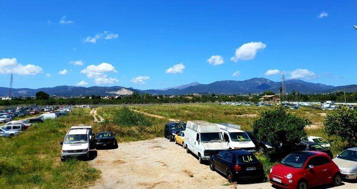 El Ayuntamiento de Palma retira más de 1.300 vehículos de Son Toells