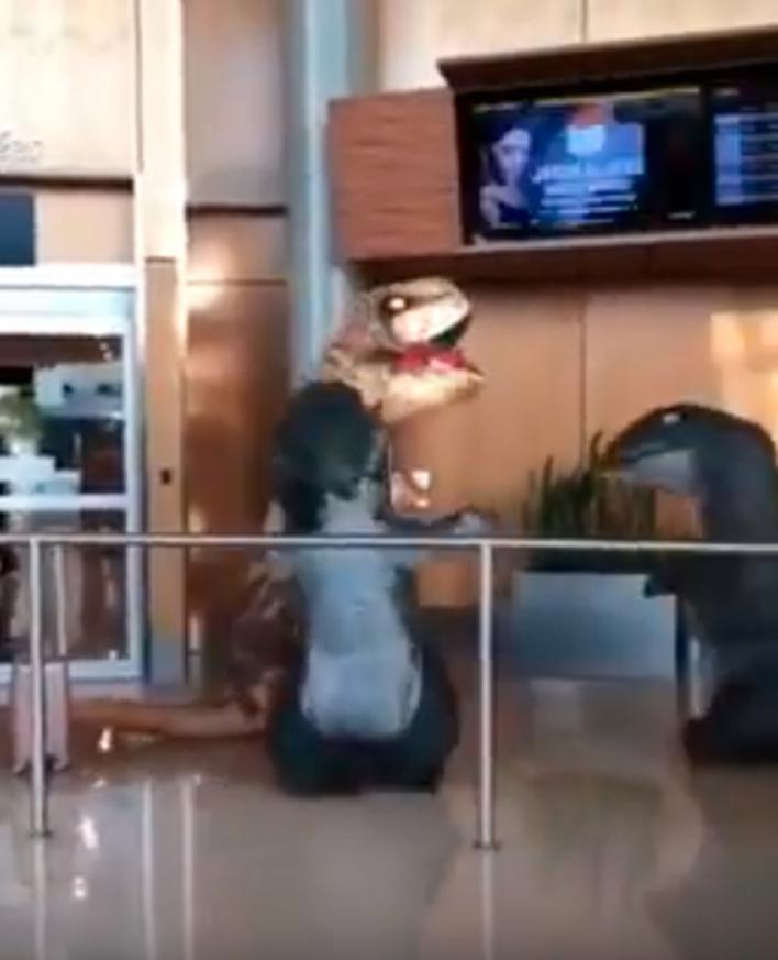 El reencuentro de los T-Rex