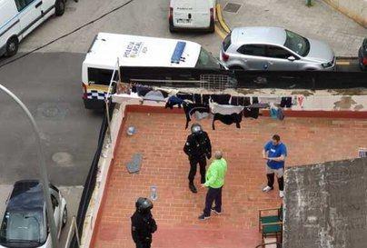 Intervención de la policía tras una denuncia avisando de una pelea de gallos en una terraza