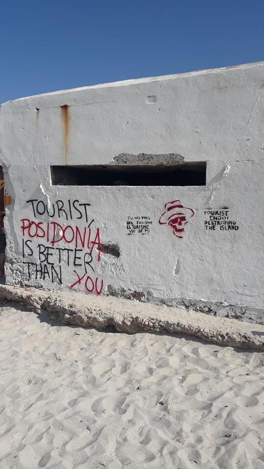 Pintadas en Es Trenc: 'Turista, asesino de la Isla, la posidonia es mejor que tú'