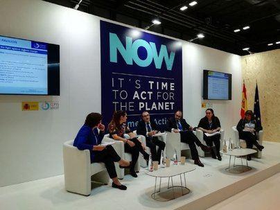 Yllanes explica al resto de CCAA las medidas de Baleares a favor de la transición energética