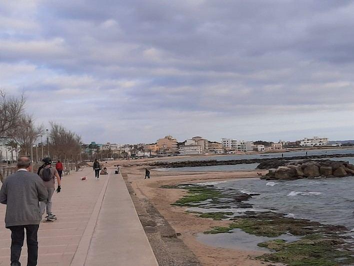 Piden a Cort que declare la primera línea de playa de Palma como Zona de Especial Protección