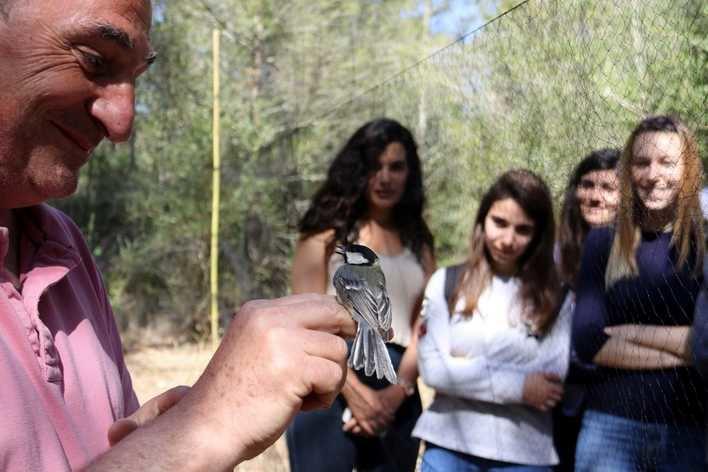 Formarán a anilladores científicos de aves en una estación en la UIB