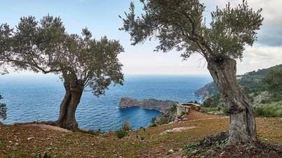 Baleares exporta 'Better in Winter' y 'Pescaturismo' a otros países de Europa