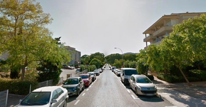 En estado grave un jardinero tras caer desde tres metros mientras podaba un árbol en Palmanova