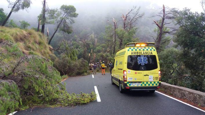 Dos tramos de carretera en la Serra siguen cortados por los daños causados por el cap de fibló