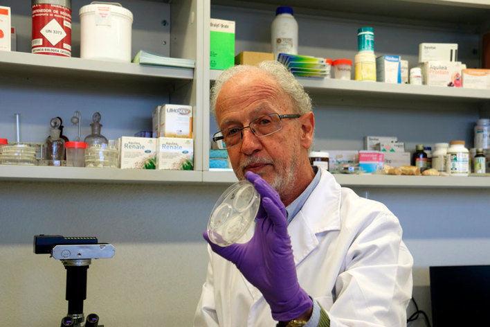 La UIB ensaya en Inglaterra y Estados Unidos un nuevo fármaco para enfermos renales