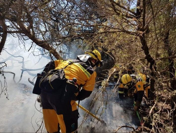 Controlado el incendio forestal de Selva