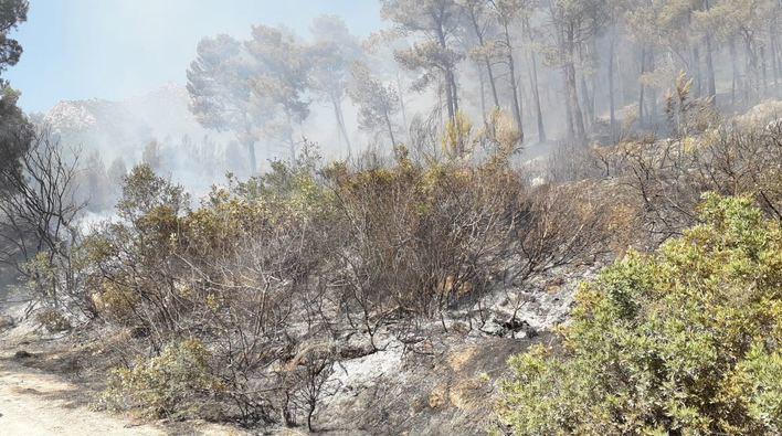 Declarados dos nuevos incendios en Andratx y Alaró