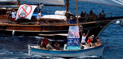 Alianza Mar Blava propone