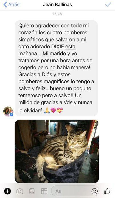 Los Bomberos de Palma rescatan a un gatito asustado de una fachada