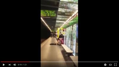 Investigada una pareja por practicar sexo en pleno metro de Barcelona