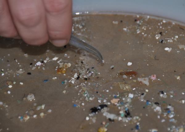 Una persona come al menos 50.000 partículas de microplástico al año