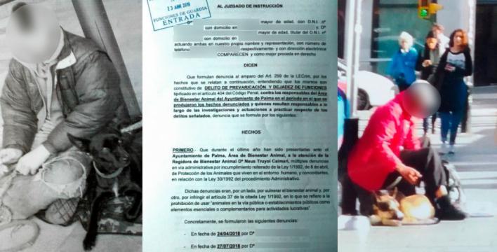 Querella contra Neus Truyol por no perseguir la mendicidad ilegal con perros