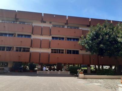 La Residencia dedicará septiembre a Joan Miró