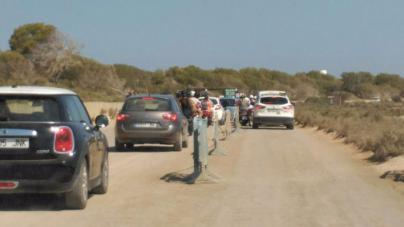 Los turistas pagarán hasta seis euros por aparcar en Ses Salines de Formentera