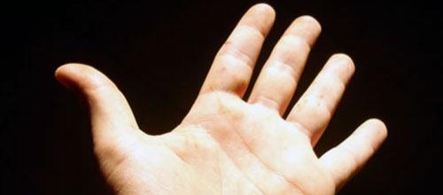 La longitud de los dedos de la mano determina el tamaño del pene