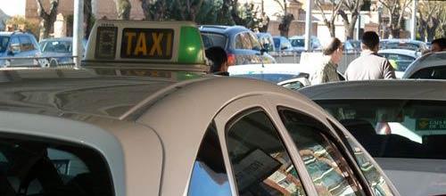 Los taxistas de Palma denuncian graves pérdidas por el intrusismo