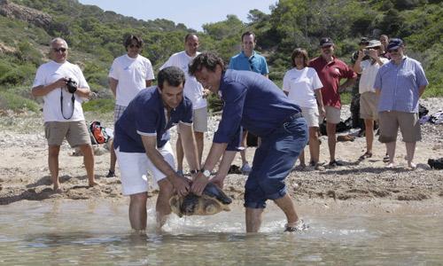 Suelta de tortugas sin la Familia Real