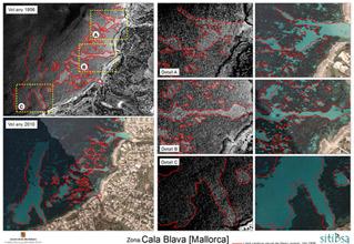 Detectados 374 fondeos irregulares sobre la posidonia balear