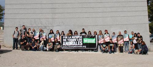 Concentración en Palma a favor de la adopción de animales