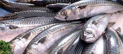 Comer pescado puede disminuir el riesgo de diabetes