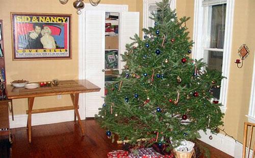 Emaya recoge los árboles de Navidad