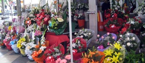 Las florister�as denunciar�n