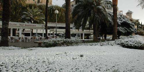 Palma, bajo un manto blanco