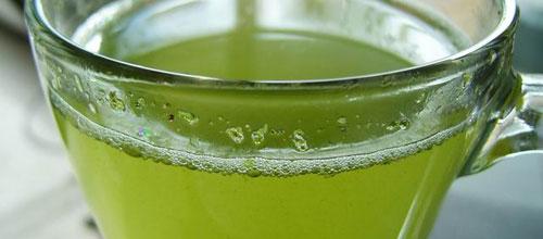 Los consumidores de té verde tienen una menor discapacidad con la edad