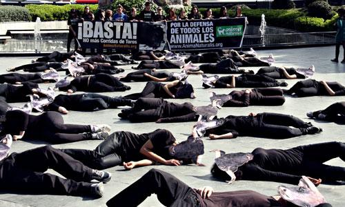 Protesta en Palma contra las corridas de toros