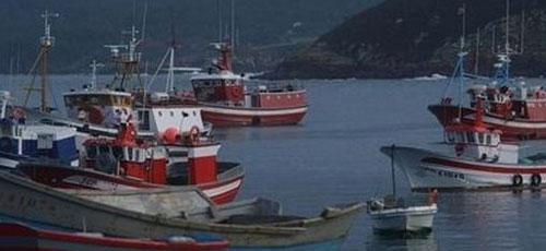 La flota pesquera balear se reduce un 12% en 5 años