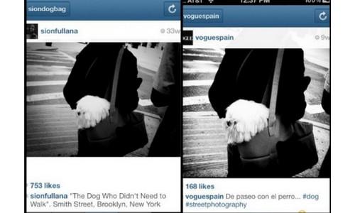 Un mallorquín denuncia que Vogue le roba fotos