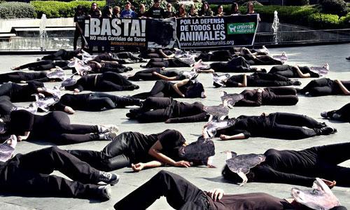 Un centenar de personas participan en la concentración antitaurina de Muro