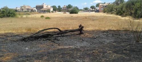 Detenido un joven de 16 años por provocar incendios