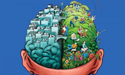 El altruismo depende de una región del cerebro