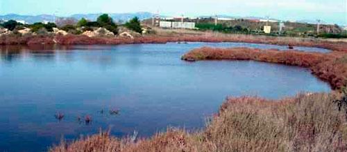 El Govern levanta la suspensión del proyecto de Ses Fontanelles