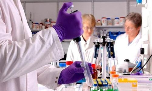 Las mutaciones de células en una leucemia son por envejecimiento