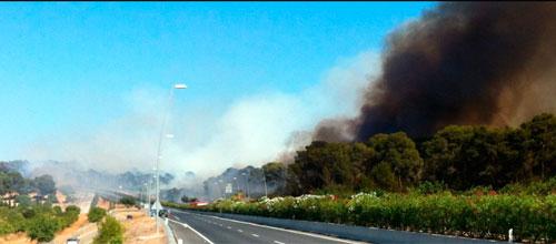 El Govern sospecha que los incendios son intencionados