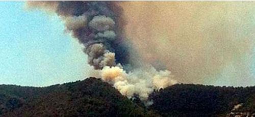 Se da por controlado el incendio forestal declarado en Son Vida