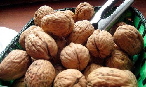 Comer nueces mejora la salud del esperma