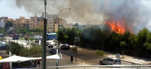 Un incendio cerca del PalmaAquarium obliga a evacuar a 1.600 visitantes