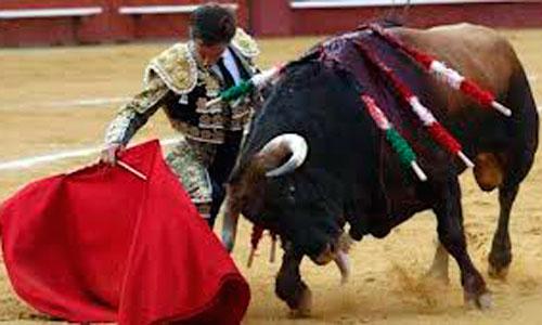 Vuelven los toros a TVE