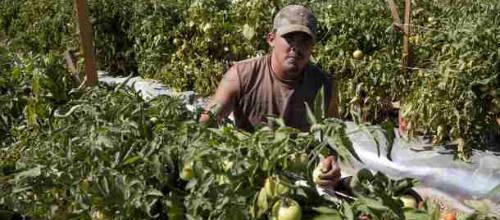 Más de 51.000 trabajadores en la economía sumergida de Baleares